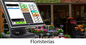 software para floristerias